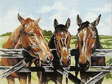 """"""" The THREE AMIGOS"""" HORSE PALS BESPOKE TAPESTRY WOOL KIT TO STITCH 60 X 50 CM!"""