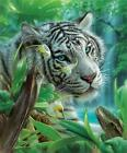 White Tiger Of Eden 1000 Pc Jigsaw Puzzle For Sale