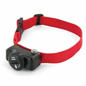 PETSAFE Delux Ultralight Extra Dog Collar For In-Ground Fence