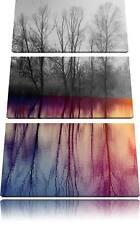 Árboles Espejo Situado en el Agua 3-Teiler Foto Lienzo Decoración Pared Impreso