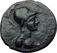 APAMEIA in SELEUKIS 26BC Genuine Athena Nike Authentic Ancient Greek Coin i60760