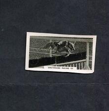 Wills - 1932 - Home Events - No 44 - Greyhound Racing
