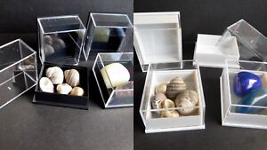 100 Small Perspex Clear Lid Specimen Crystal Display Boxes Black Or White Bases