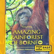Amazing Rainforest of Borneo (huang yi-FEN)