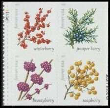 2019 US Stamp - Winter Berries - Plate Block of 4 - SC#5415-5418