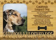 Catahoula Leopard Dog Engraved Wood Picture Frame Magnet