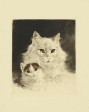 Kurt Meyer-Eberhardt Radierung perser Katze katzen cat echting s