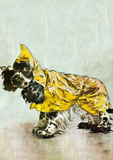COCKER SPANIEL IN THE RAIN CHARMING COMIC DOG GREETINGS NOTE CARD