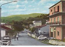 CARTOLINA  CAMPANIA AVELLINO- S. NICOLA BARONIA, VIALE NAZIONALE