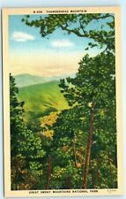 Thunderhead Mountain Great Smoky Mountains National Park Vintage Postcard A53