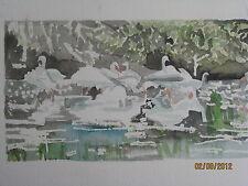 """W/CPrint/ Birds Feeding/ 3 1/2"""" x 9 1/2""""/ Mimi Davis, Artist"""