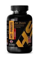 detox parasite cleanse - ANTI-PARASITE COMPLEX - body cleanse detox