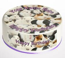 Guinea Pig Cake Topper; Rice Paper,Icing, Personalised decoration.811