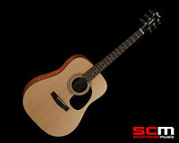 CORT AD810 DREADNOUGHT STEEL STRING ACOUSTIC GUITAR PRO-SCM PREMIUM SETUP