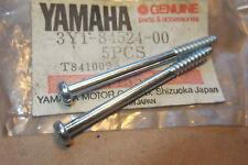 YAMAHA XT500 XT250 XT550 XVZ12 XVZ13  NOS TAIL LAMP LENS SCREWS - # 3Y1-84524-00