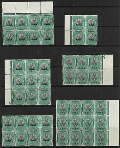 South West Africa 1930 Springbok ½d Selection of Blocks NA-SW 68 Superb MNH