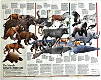 ⫸ 1989-6 March Toward Extinction – National Geographic Map New View Dinosaurs