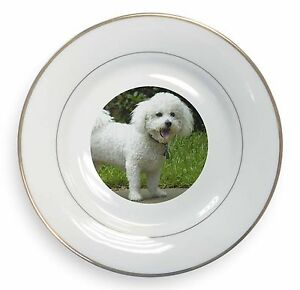 Bichon Frise Dog Gold Rim Plate in Gift Box Christmas Present, AD-BF2PL