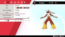 Pokemon Braségali    shiny 6IV + masterball - Battle Ready - Epée / Bouclier