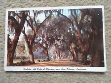 POSTCARD. OF CENTURY-OLD OAKS AT MANRESA NEAR N.ORLEANS LOUISIANA.POSTED.