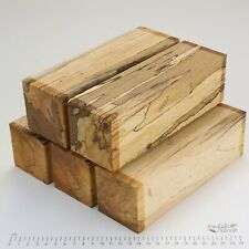 5 Punky Spalted Beech wood turning spindle blanks. 65 x 65 x 205mm. 5197A