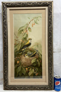 Vtg 1990 E. Vouga Art Yellow Bird Black Wings Nest Chick Print Barbola Framed