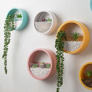 Wall Mounted Bonsai Plant Flower Pot Planter Succulent Basket Hanging Home Decor