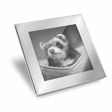 Silver Glass Coaster - Bw - Ferret Hammock Pet Rodent Animal #37246