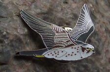 North American Pigeon Hawk Merlin Wildlife Protection Bird Brooch Pin Badge