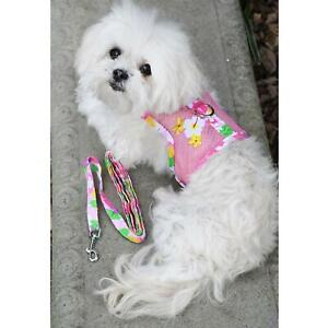 Cool Mesh Dog Harness with Leash - Pink Hawaiian Floral & Matching Leash  XS-L