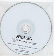 (ET960) Feldberg, Dreamin' - 2011 DJ CD