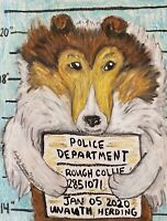 Collie Mug Shot Collectible ACEO Dog Art Print 2.5 x 3.5 Signed by Artist KSams