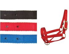 "Llama Halters - 3/4"" nylon criss cross halter - 2 sizes - 3 colors - Brass plate"