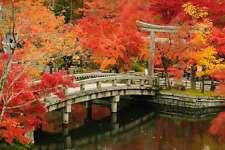 STUNNING JAPANESE GARDEN LANDSCAPE CANVAS #289 QUALITY FRAMED WALL ART A1