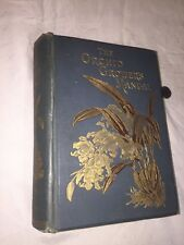 Rare Book 1894 The Orchid Growers Manuel Illustrated