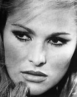 8x10 Print Ursula Andress The 10th Victim 1965 #5501417