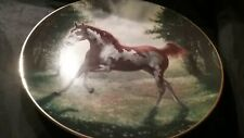 "Unbridled Spirit ""Painted Sunrise"" Collectors Horse Plate by Chuck DeHann"