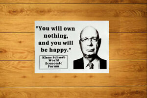 You Will Own Nothing - Sticker Packs (10-100) Schwab NWO The Great Reset Liberty