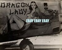 "WWII Original Nose Art B-24 Liberator ""Dragon Lady"" 7th Air Force 11th Bomb Gp"