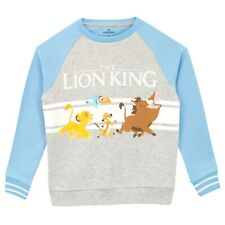 Disney Boys Cars Jumper Sweater Sweat Top Age 2 to 8 Yrs