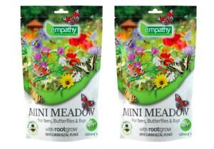 2X Meadow Mini Flower Seeds Easy Seed Plantworks Garden Wild Plant Bees Empathy