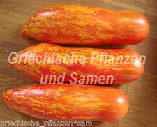 Flaschen Tomate STRIPED ROMAN 10 frische Samen gestreift Eier-Tomaten Tomaten