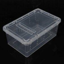 Transparent Plastic Plastic Box Insect Reptile Transport Breeding Feeding Case