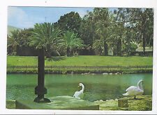 Judaica Shana Tova Postcard PC Kibutz NIR DAVID 1978 USED