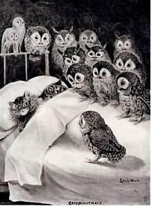 LOUIS WAIN CAT PRINT CATS MIDNIGHT BED OWL NIGHTMARE KITTENS OWLS SLEEPING