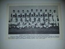 Mobile Athletics A's 1966 Team Picture Tony La Russa Sal Bando John McNamara