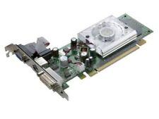 Cartes graphiques et vidéo NVIDIA 256 Mo pour ordinateur