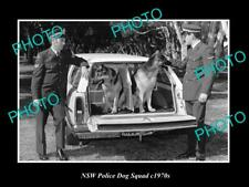 OLD POSTCARD SIZE PHOTO OF NEW SOUTH WALES POLICE DOG SQUAD c1970