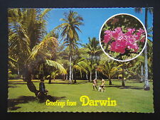 GREETINGS FROM DARWIN BOTANICAL GARDENS COCNUT GROVE BOUGAINVILLEA POSTCARD