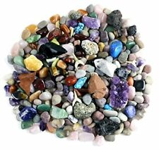 Rock & Mineral Collection Activity Kit Over 150 Pcs with METEORITE Dancing Bear